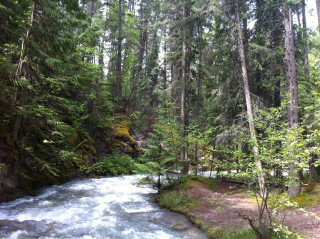 Hiking / Mountaineering