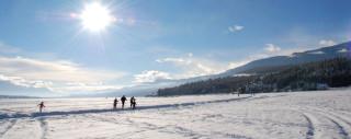 cvc-snow-header